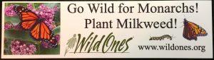 PlantMilkweed