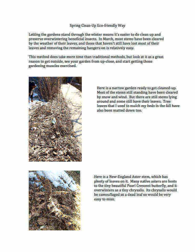 Spring Clean Up Page 1