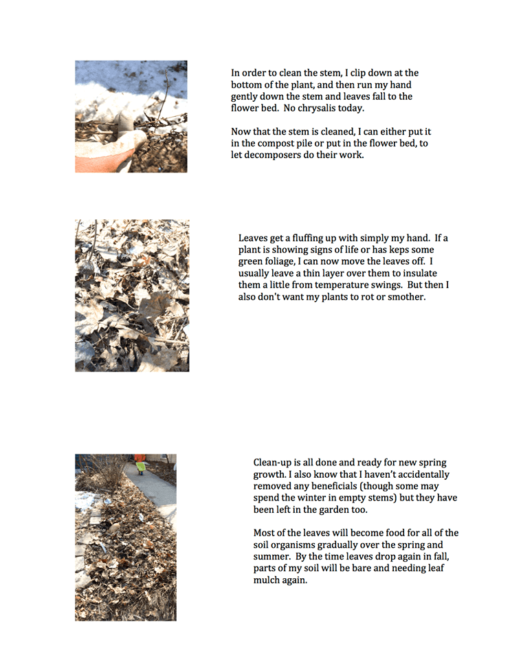 Spring Clean Up Page 2