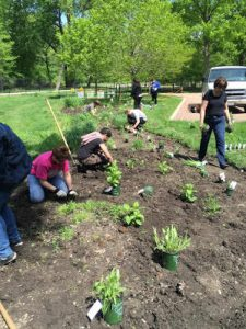 Students planting at Dominican
